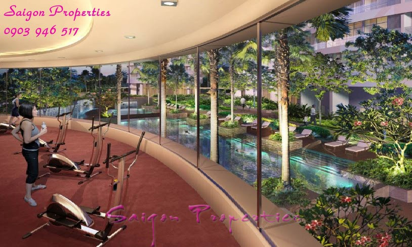 Luxury-Gym-with-great-view 2
