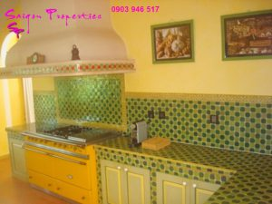 VILLA FOR RENT IN SAIGON - GREEN SPACE FOR peaceful life - kitchen stove